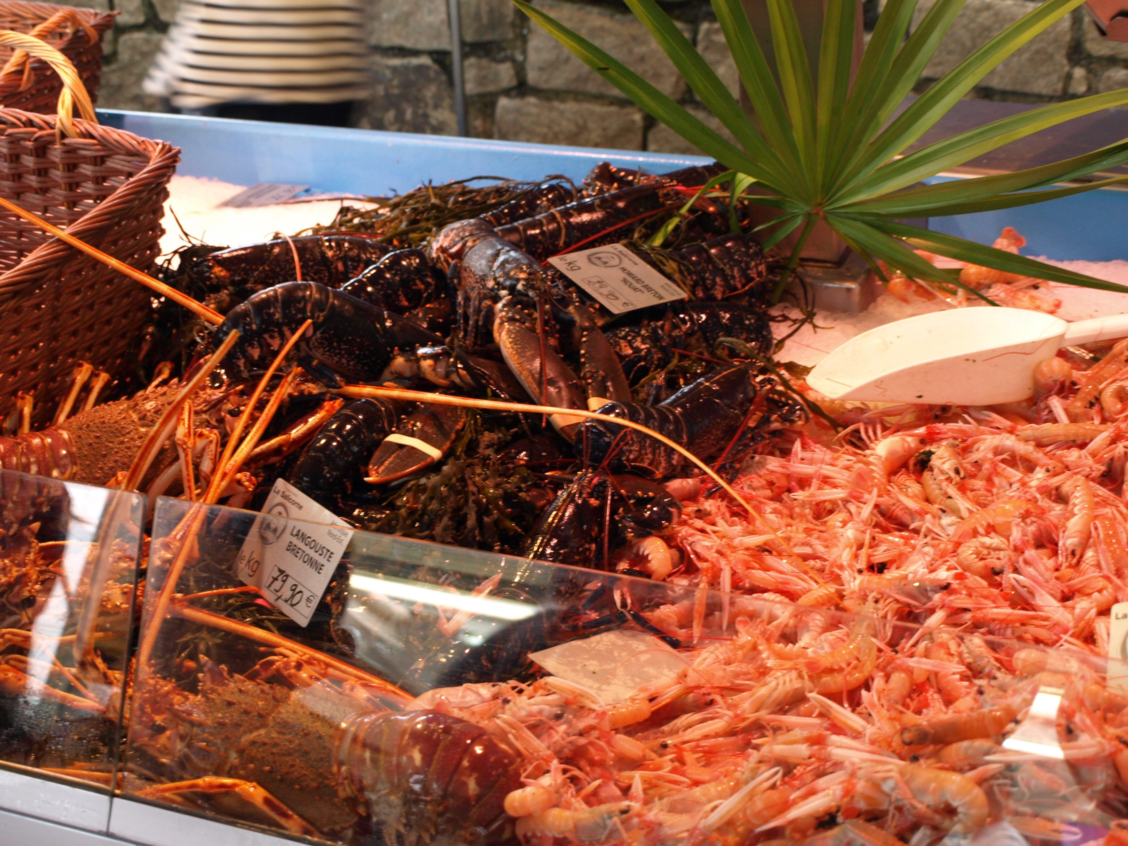Francie - Bretaň - Carnac, plody moře na tržnici