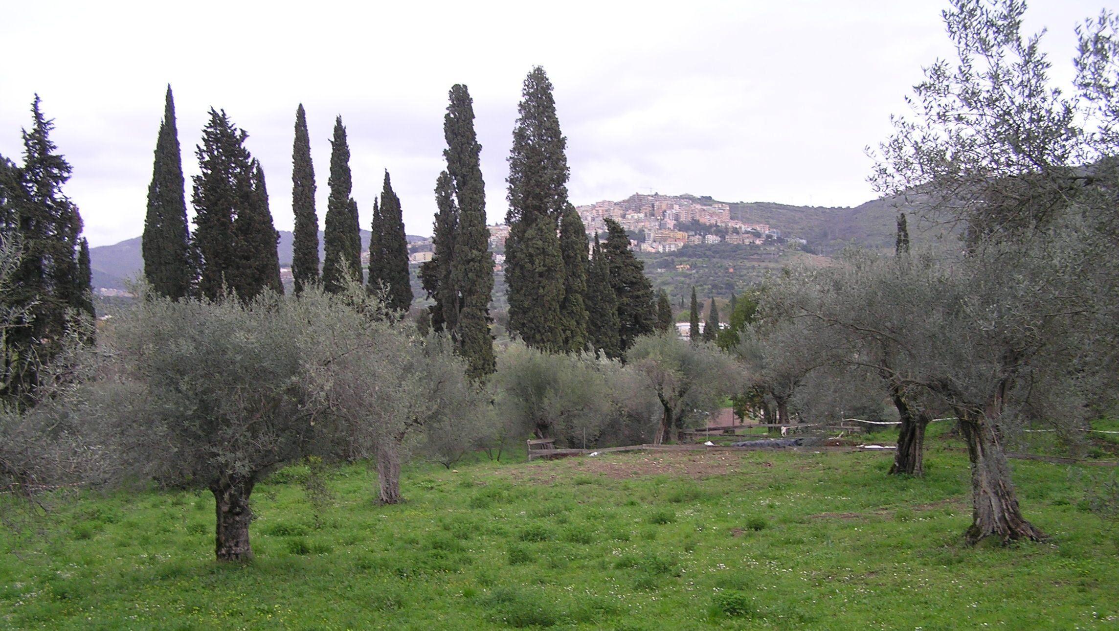 Řím - Tivoli - okolí Hadriánovy vily