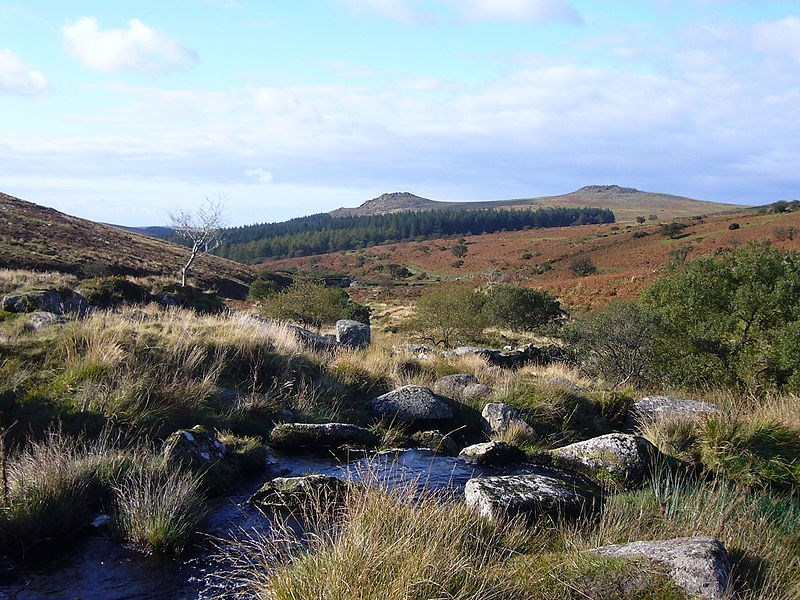 národní parky a zahrady - V.Británie - Anglie - NP Dartmoor - Sharpitor