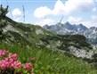 zajímavosti - Slovinsko - Národní park Julské Alpy